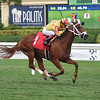 Gran Brandy - Maiden Win, Gulfstream Park, August 15, 2019 <br /> Coglianese Photos/Lauren King