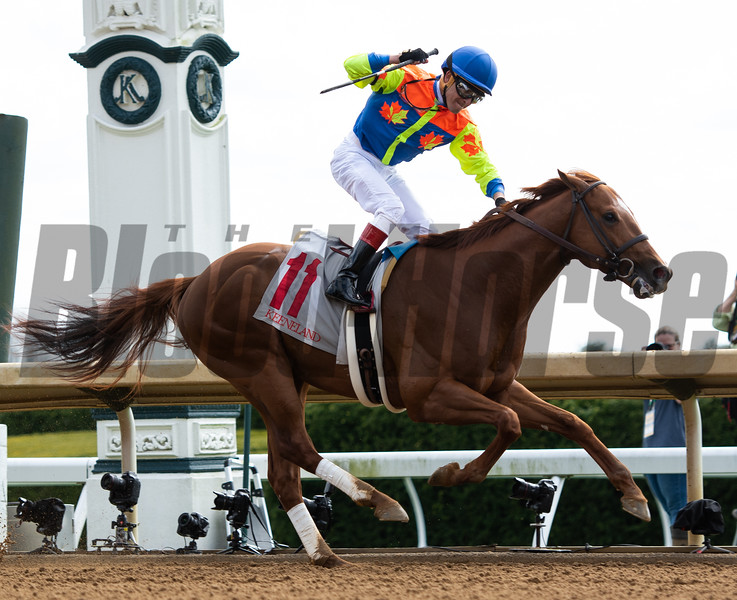 Bobby's Wicked One wins the Commonwealth