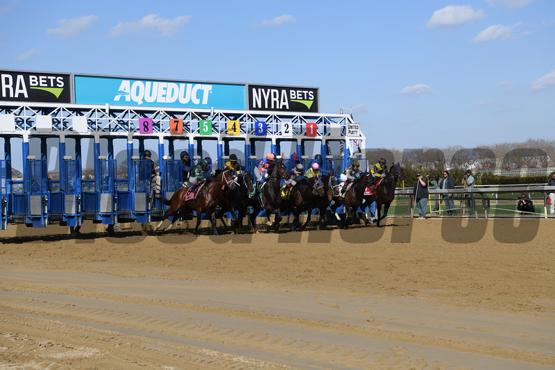 Life's a Parlay wins the Excelsior Stakes at Aqueduct Saturday, April 6, 2019. Photo: Coglianese Photos