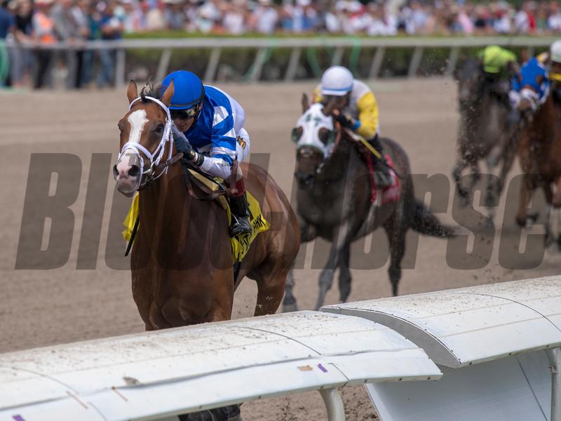 Prince Lucky with  John Velazquez   wins The Gulfstream Park mile  .  @ Gulfstream Park.  March 30 2019<br /> ©JoeiOrio/Winningimages.biz