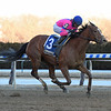 Holiday Disguise wins the 2019 Broadway Stakes at Aqueduct<br /> Coglianese Photos/Elsa Lorieul