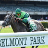 Homerique wins the 2019 Beaugay at Belmont Park<br /> Coglianese Photos/Chelsea Durand