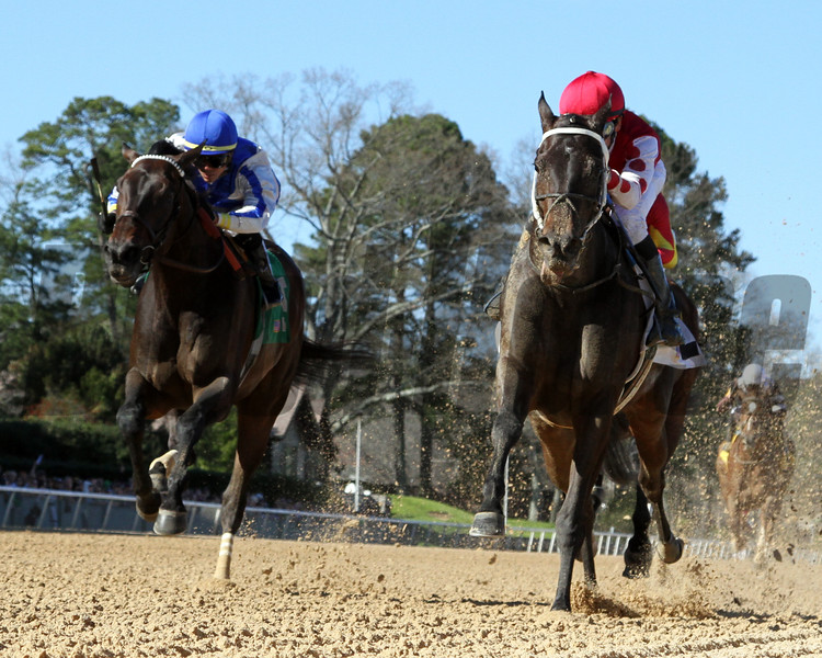 Midnight Bisou with Mike Smith The Azeri at Oaklawn Park March 16, 2019. Photo By: Chad B. Harmon