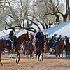 Scene as horses wait to go on the track.<br /> Morning sales and racing scenes at Keeneland in Lexington, Ky., on April 4, 2019