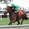 Si Que Es Buena wins the 2019 La Prevoyante Stakes at Gulfstream Park<br /> Coglianese Photos/Lauren King