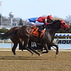 Archumybaby wins the 2019 Videogenic Stakes at Aqueduct<br /> Coglianese Photos/Chelsea Durand