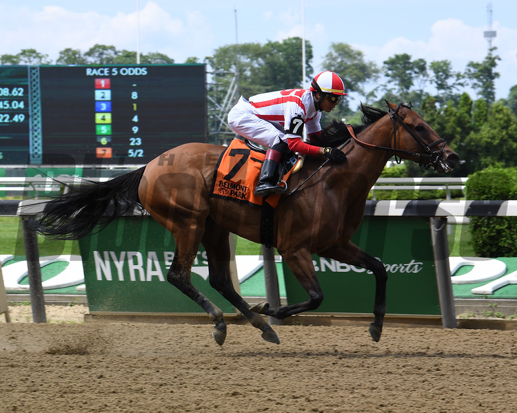 Separationofpowers wins the 2019 Bed o' Roses Invitational Stakes at Belmont Park<br /> Coglianese Photos/Susie Raisher