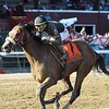 Bon Raison wins the 2019 Tale of the Cat Stakes at Saratoga<br /> Coglianese Photos/Elsa Lorieul