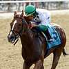 Promises Fulfilled wins the 2019 John A. Nerud Stakes at Belmont Park<br /> Coglianese Photos/Elsa Lorieul