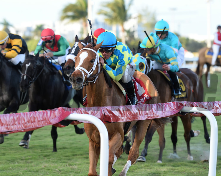 Bellavais wins the 2019 Marshua's River Stakes (G3T) at Gulfstream Park<br /> Coglianese Photos/Kenny Martin
