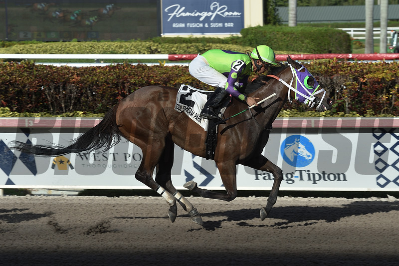 Lovesick wins the 2019 Liza Jane Stakes at Gulfstream Park<br /> Coglianese Photos/Lauren King