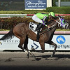 Lovesick wins the 2019 Liza Jane Stakes at Gulfstream Park<br /> Coglianese Photos/Lauren King
