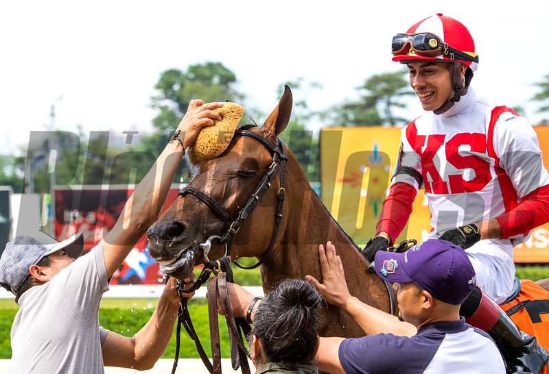 Separationofpowers ridden by Jose Ortiz wins the 63rd running of The Bed O'Roses (GIII) at Belmont Park in Elmont, N.Y. June 7, 2019.  Photo by Skip Dickstein