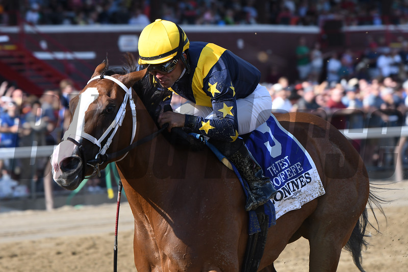 Covfefe wins the 2019 Test Stakes at Saratoga<br /> Coglianese Photos/Elsa Lorieul