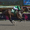 Quijote wins the 2019 Sunshine Millions Sprint Stakes at Gulfstream Park<br /> Coglianese Photos/Leslie Martin