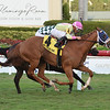 Samara wins the 2019 Captiva Island at Gulfstream Park<br /> Coglianese Photos/Leslie Martin