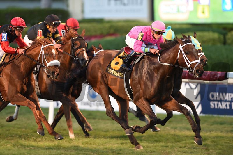Zulu Alpha wins the 2019 Mac Diarmida Stakes at Gulfstream Park<br /> Coglianese Photos