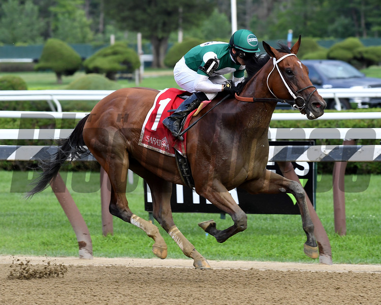 Special Relativity wins the 2019 Shine Again Stakes at Saratoga<br /> Coglianese Photos