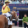Dream Pauline wins the Hurricane Bertie Stakes at Gulfstream Park<br /> Coglianese Photos/Lauren King