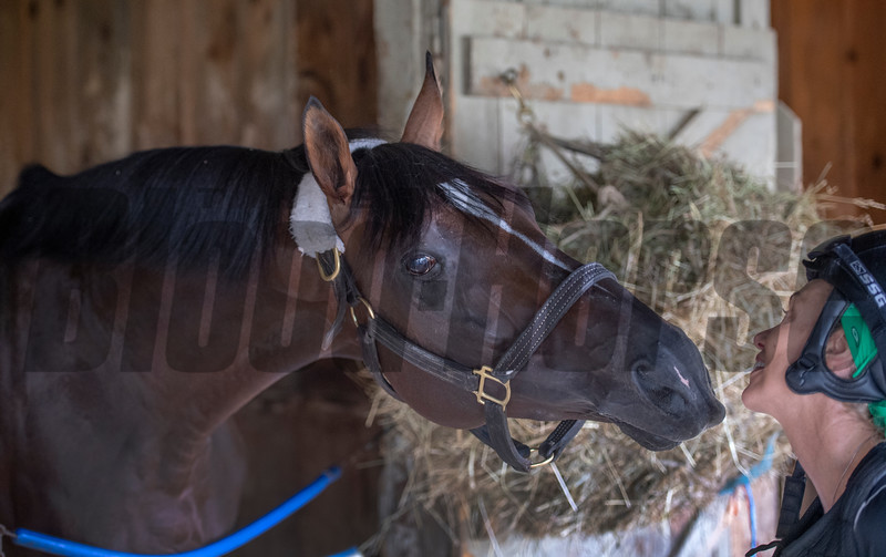 Preservationist gives some love to Shirley Jerkens in the bar at the Oklahoma Training Center adjacent to the Saratoga Race Course Friday July 12, 2019 in Saratoga Springs, N.Y.  Photo by Skip Dickstein