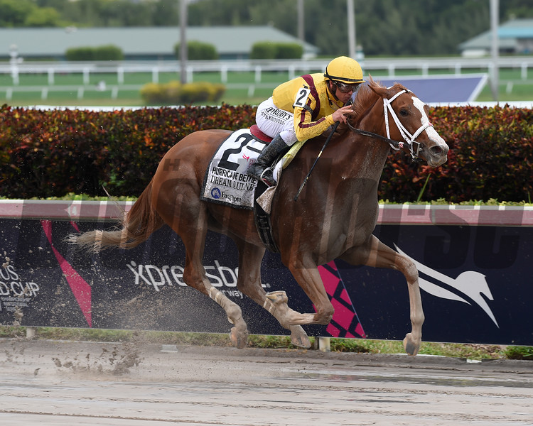 Dream Pauline wins the 2019 Hurricane Bertie Stakes at Gulfstream Park<br /> Coglianese Photos/Zoe Metz