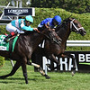 Lucullan wins the 2019 Lure Stakes at Saratoga <br /> Coglianese Photos/Derbe Glass