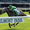 Homerique wins the 2019 Beaugay at Belmont Park<br /> Coglianese Photos/Joe Labozzetta