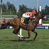 Driven by Thunder wins the 2019 James H. Kyle Stakes at Gulfstream Park<br /> Coglianese Photos/Lauren King