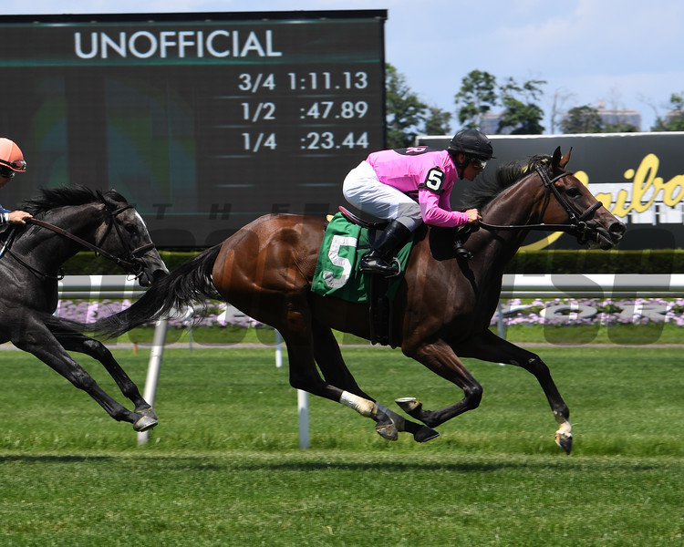 A Little Faith - Maiden Win, Belmont Park, June 30, 2019<br /> Coglianese Photos