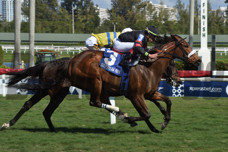 Holy Helena wins the 2019 The Very One at Gulfstream Park<br /> Coglianese Photos/Leslie Martin