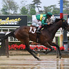 Private Beach - Maiden Win, Belmont Park, May 4, 2019<br /> Coglianese Photos