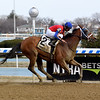 H Man wins the 2019 Kelly Kip Stakes at Aqueduct<br /> Coglianese Photos/Chelsea Durand