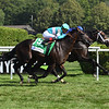 Lucullan wins the 2019 Lure Stakes at Saratoga. Photo: Coglianese Photos