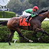 Oleksandra wins the 2019 Smart N Fancy Stakes at Saratoga<br /> Coglianese Photos/Susie Raisher