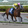 A Bit of Both wins the 2019 Game Face Stakes at Gulfstream Park<br /> Coglianese Photos/Lauren King