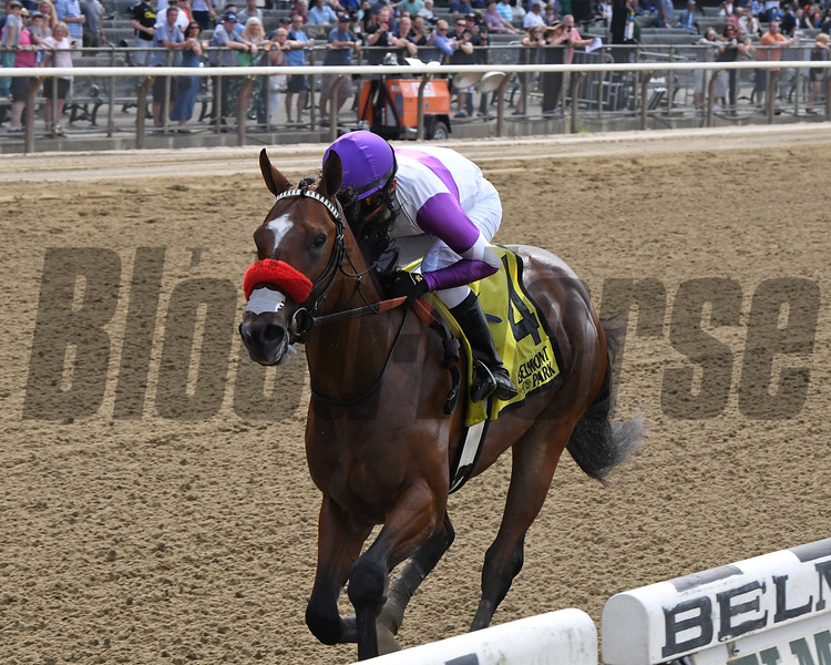 Fore Left wins the 2019 Tremont Stakes at Belmont Park<br /> Coglianese Photos/Chelsea Durand