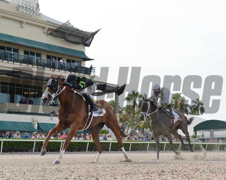 Stormy Embrace wins the 2019 Princess Rooney Stakes at Gulfstream Park<br /> Coglianese Photos