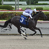 Belladonnia - Maiden Win, Gulfstream Park, August 23, 2019<br /> Coglianese Photos/Lauren King