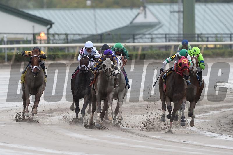 Aztec Sense wins the 2019 Fred W. Hooper Stakes at Gulfstream Park <br /> Coglianese Photos/Tim Sullivan