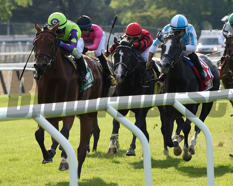 Seek and Destroy wins the 2019 Soaring Softly at Belmont Park<br /> Coglianese Photos/Elsa Lorieul