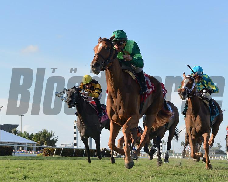 Precieuse wins the 2019 Honey Fox Stakes at Gulfstream Park<br /> Coglianese Photos