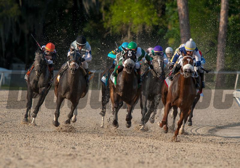 Tacitus. with Jose Ortiz up Wins The Lambholn South Tampa Bay Derby    Billy Mott  @ Tampa Bay Downs in Oldsmar  Fl  March 9 2019<br /> ©JoeDiOrio/Winningimages.biz