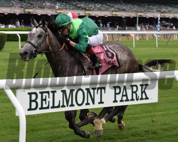 Homerique wins the 2019 New York Stakes at Belmont Park<br /> Coglianese Photos/Joe Labozzetta