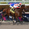 Feedback wins the 2019 Forward Gal Stakes at Gulfstream Park<br /> Coglianese Photos