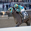 Do Share wins the 2019 Tom Fool at Aqueduct<br /> Coglianese Photos/Joe Labozzetta