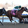 Vino Rosso wins the 2019 Stymie at Aqueduct<br /> Coglianese Photos/Susie Raisher