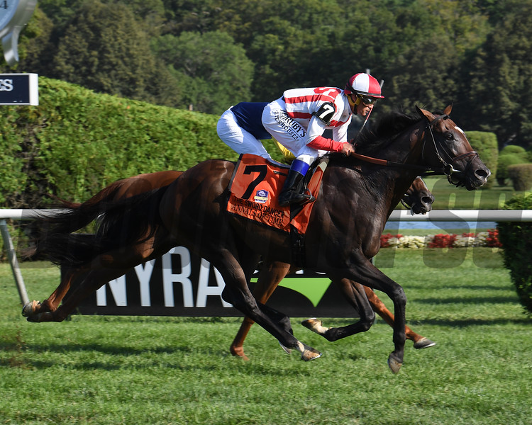 Annals of Time wins the 2019 Sword Dancer at Saratoga Race Course. Photo: Coglianese Photos/Susie Raisher