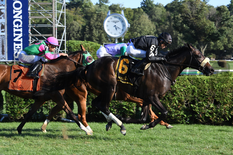 Crystalle wins the 2019 P. G. Johnson Stakes<br /> Coglianese Photos