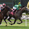 Homerique wins the 2019 New York Stakes at Belmont Park<br /> Coglianese Photos/Janet Garaguso