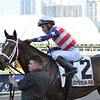 America's Tale wins the 2019 Inside Information at Gulfstream Park<br /> Coglianese Photos/Derbe Glass